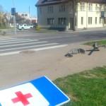 Šalia Pagėgių policijos numušęs kelio ženklą, vairuotojas nurūko toliau