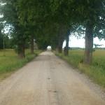 """Kelyje Natkiškiai-Timsriai iškrito akmenų """"lietus""""(video)"""