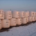 Stoniškiuose vandalizmo atvejas- ant ūkininko turto pripaišyta svastikų