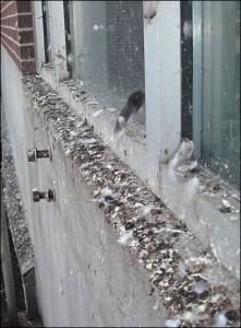 Lesinimo balkonuose pasekmės
