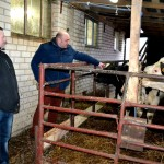 D.Rybakovas : žemės ūkis  ant sunaikinimo ribos