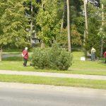 Pagėgių parke besišlapinantis varguolis pakliuvo policininkams