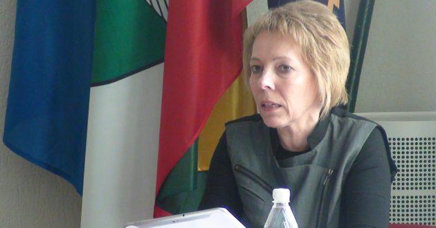 Po žemės mokesčio sumažinimo Pagėgiuose Vyriausybės atstovė suskubo gelbėti savivaldybės biudžetą