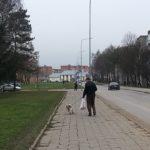D.Jančaras: valstybės likučiai- pensininkai, šuniukai ir maximos maišiukai