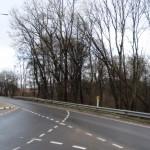Po praėjusios vėtros Mikytų kelių sankryžoje pavojingai pasviro medžiai