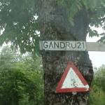Gandrų gatvėje gyvena gandrai (video)