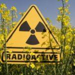Radioktyviųjų atliekų kapinyną Visagine statys Prancūzijos kapitalo įmonė su partneriais iš Rusijos?
