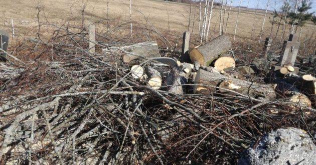 Rukų kapinių siaubas- pjaunami medžiai gulė tiesiai ant kapų