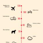 Aplinkos apsaugos ministerija šunų keliamą triukšmą įtraukė į vieną pavojingiausių žmogaus sveikatai sąrašą