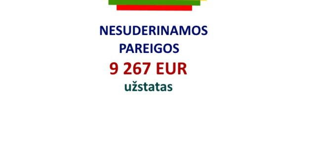 Rinkėjus apgaudinėti bus sunkiau- už kiekvieną į rinkimų sąrašus įtrauktą valstybės tarnautoją 9267 EUR užstatas