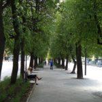 Kauno Laisvės alėjos dalis atsivėrė lankytojams