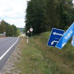 Priešpriešiniu eismu lėkęs erelis Kauno rajone paguldė ženklą ir nurūko toliau.