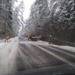 Nuo sniego ant kelių griūva medžiai, padarinius padeda šalinti ugniagesiai