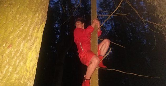 Kultūrininkų staigmena, spektaklis naktiniame miške.