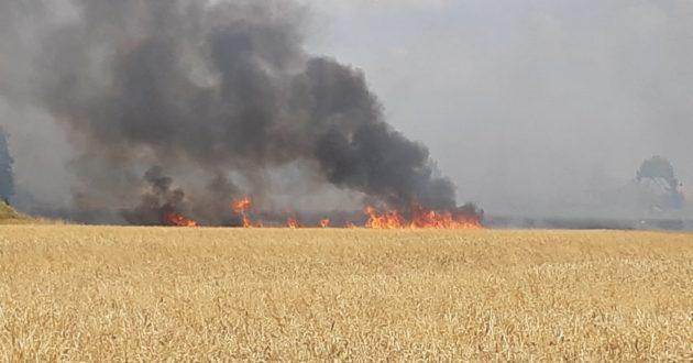 Kauno rajone užsidegė ūkininko laukas